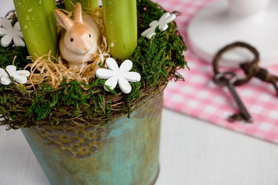 Hyacinty sú kľúčom k jari 5
