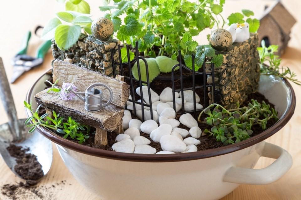 Mini záhradky v miskách 3