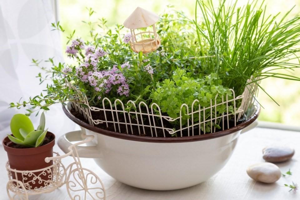 Mini záhradky v miskách 5
