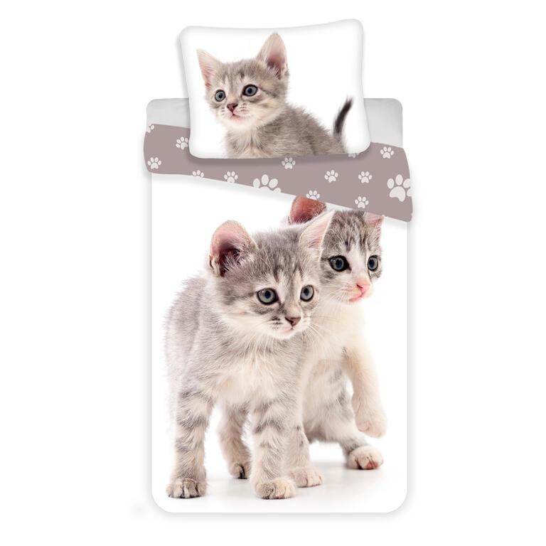 53533_kitten_grey_eshop