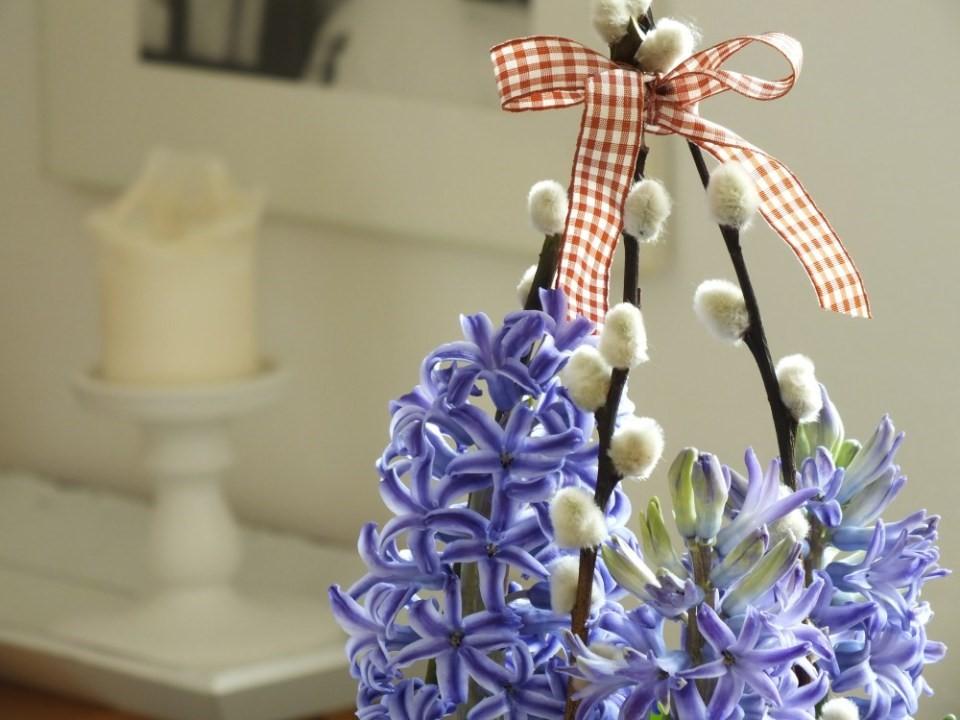 Opora pre Hyacinty 5